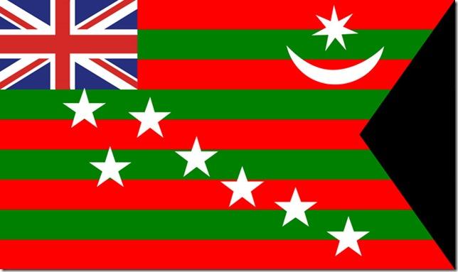5.The Home Rule Flag (1917)